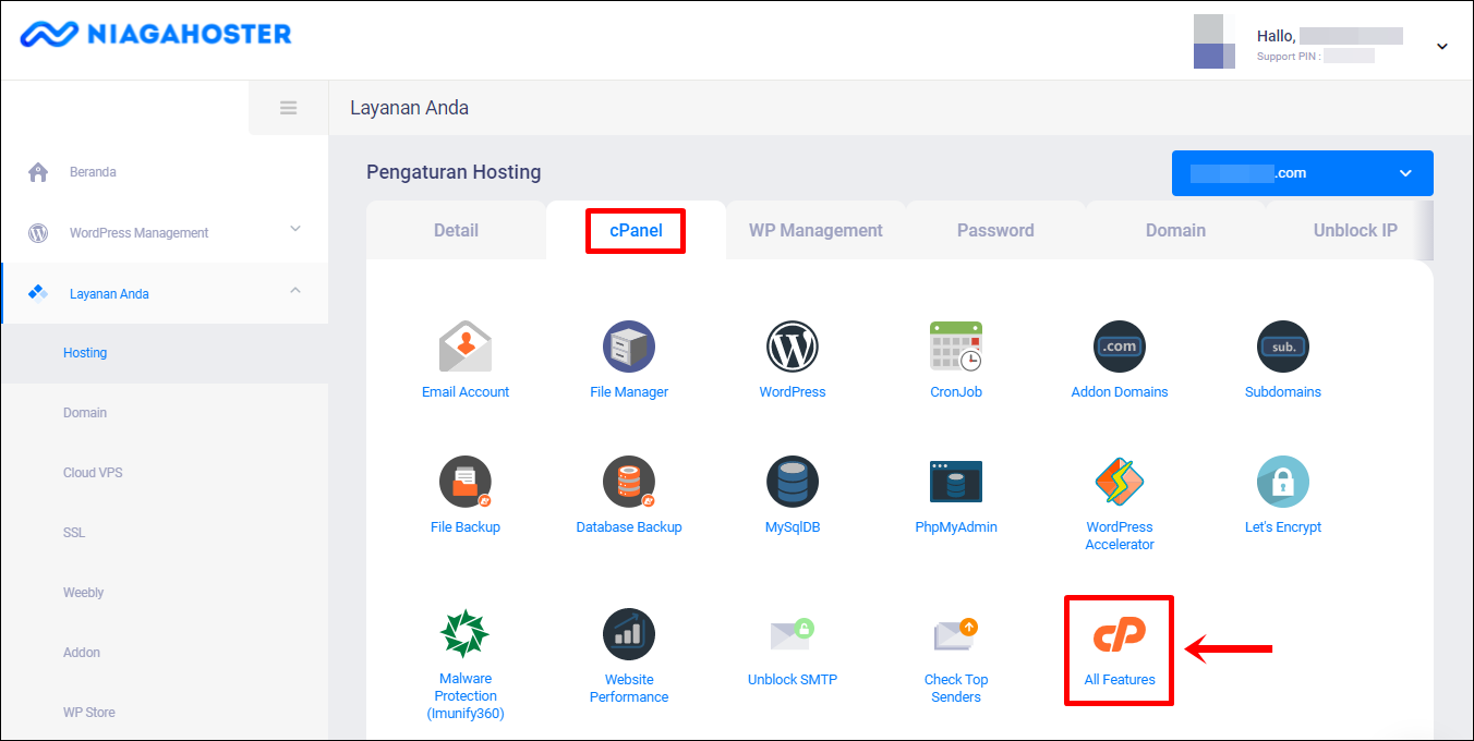 3 tab cPanel   All Features (Edit)