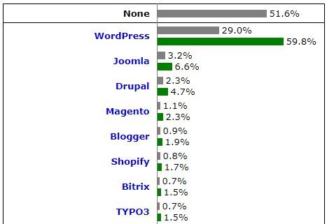 wordpress cms populer