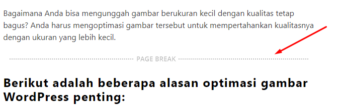 cara membuat next page di blog hasil text