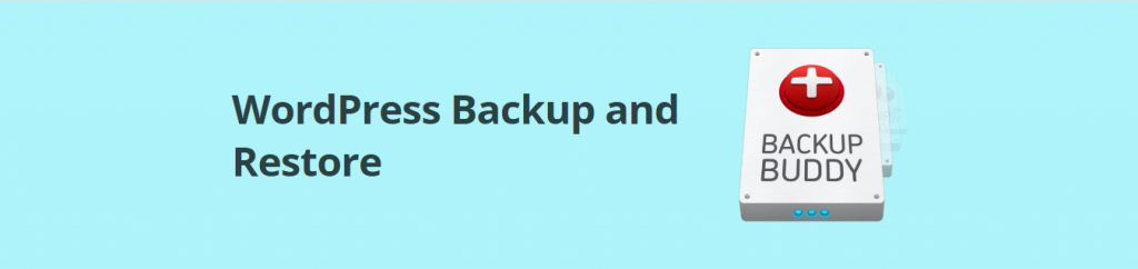 backup buddy plugin