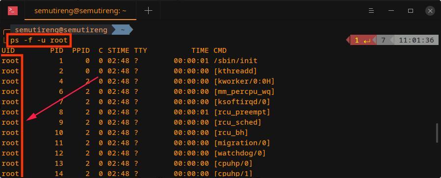manajemen proses linux - ps user