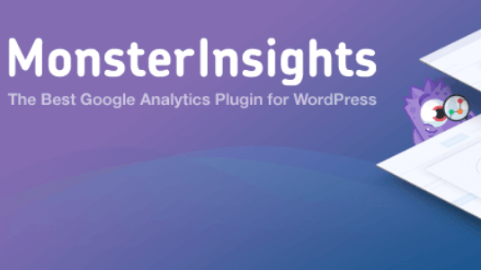 plugin bisnis monsterinsight