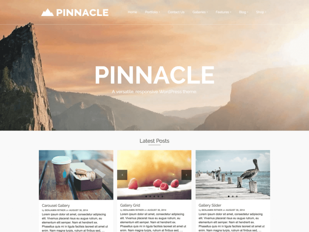 28. tema wordpress terbaru pinnacle